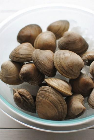 clams1-2