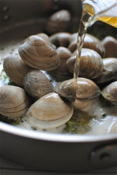 clams3-2