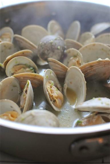 clams4-2