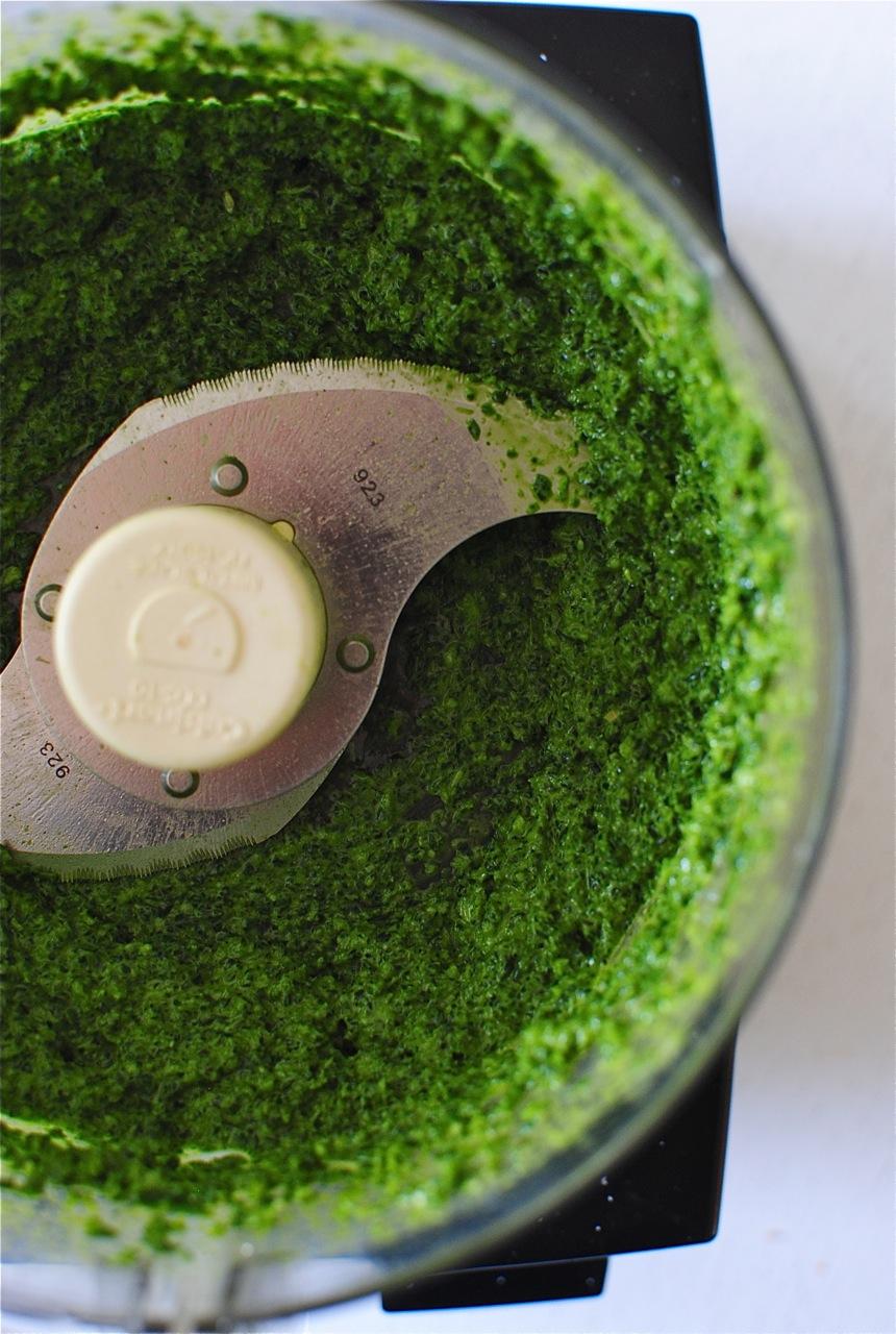 Kale pesto. But not just any kale. Lacinato kale, baby. Dinosaur kale ...