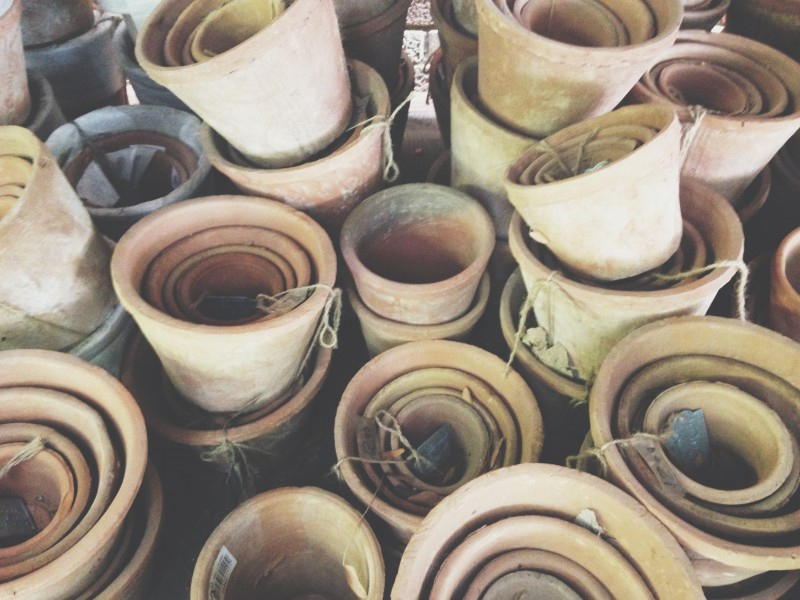Clay pots that I'm obsessed with.