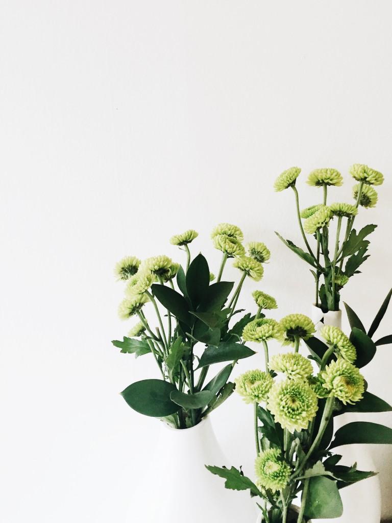 Friday Flotsam - flowers