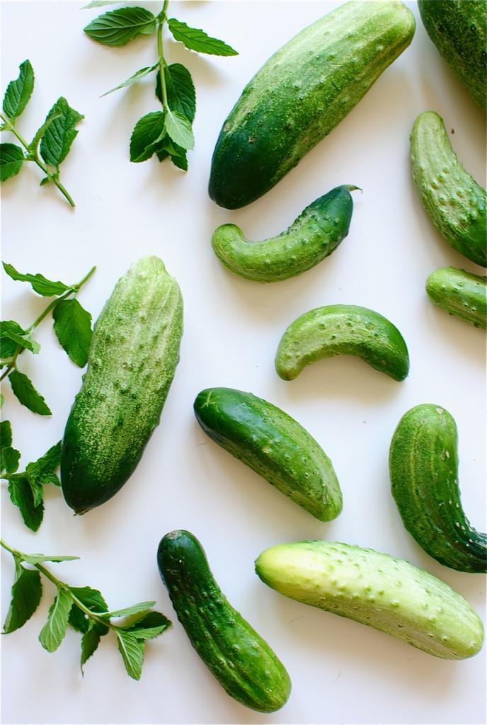Cucumber Mint Sorbet / Bev Cooks