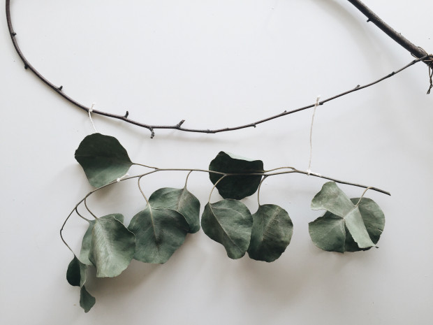 "DIY: Sage ""Dream Catcher"" and Eucalyptus ""Wreath"" / Bev Cooks"