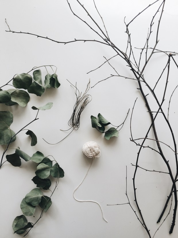 "DIY: Eucalyptus ""Wreath"" / Bev Cooks"