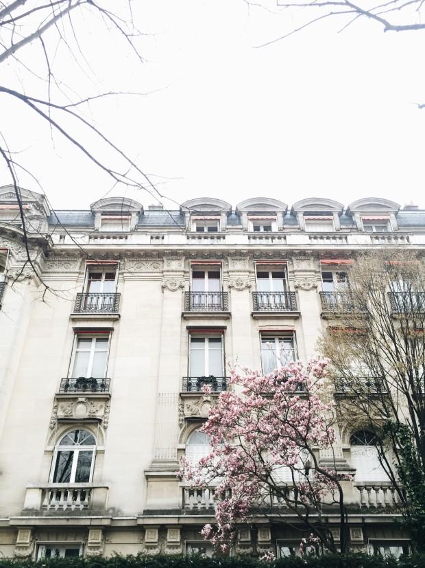 Paris Wins / Bev Cooks