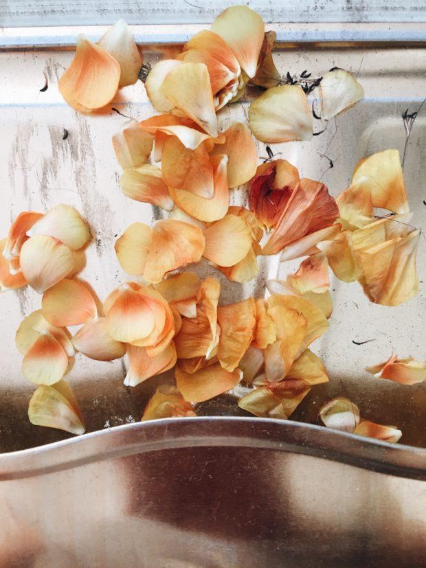 Sweeping flower petals - Friday Flotsam
