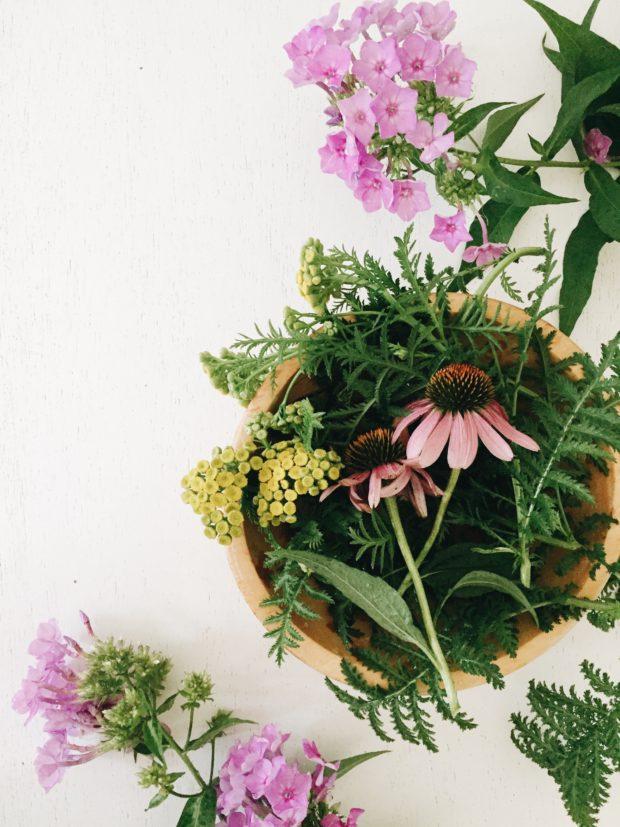 Summer Backyard Flowers