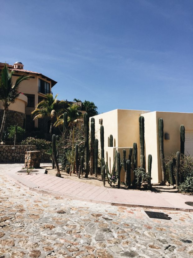GirlSquad Getaway to Cabo, Mexico