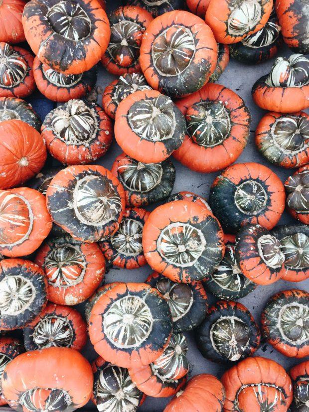 Weird Pumpkins