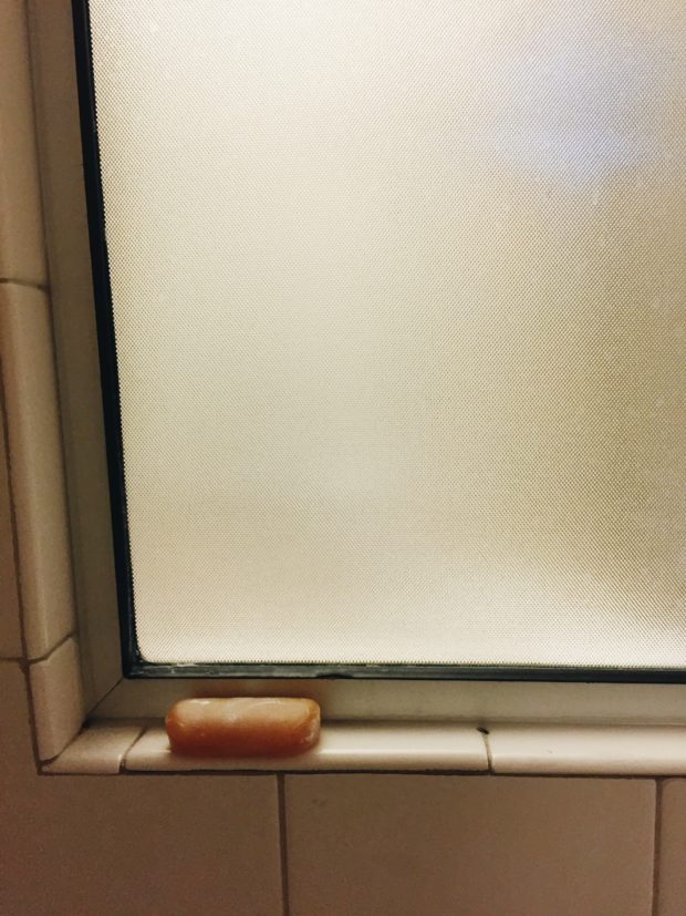 Soap in a Hotel Shower
