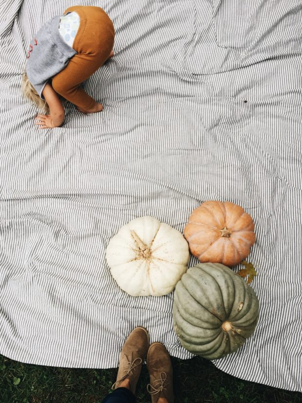 FALL. Pumpkins, blanket, booties, and booty