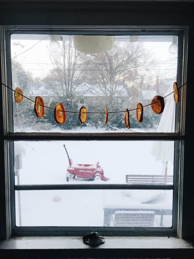 Dried Oranges in a Snowy Window