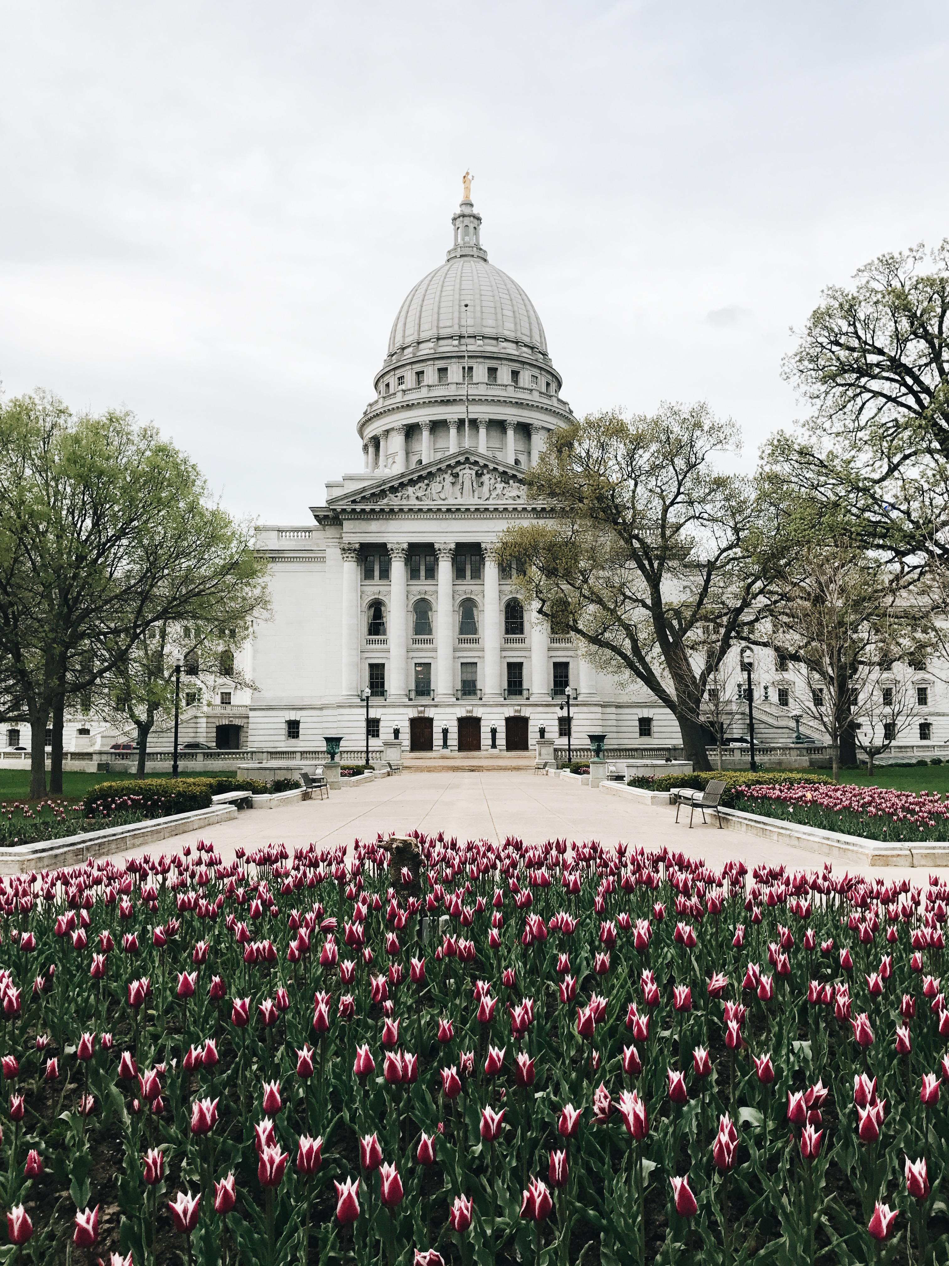 Capitol building in Madison, WI