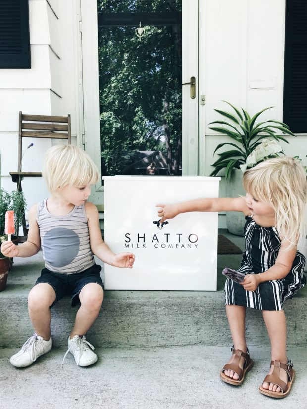Shatto Home Delivery Service - THE MILKMAN.