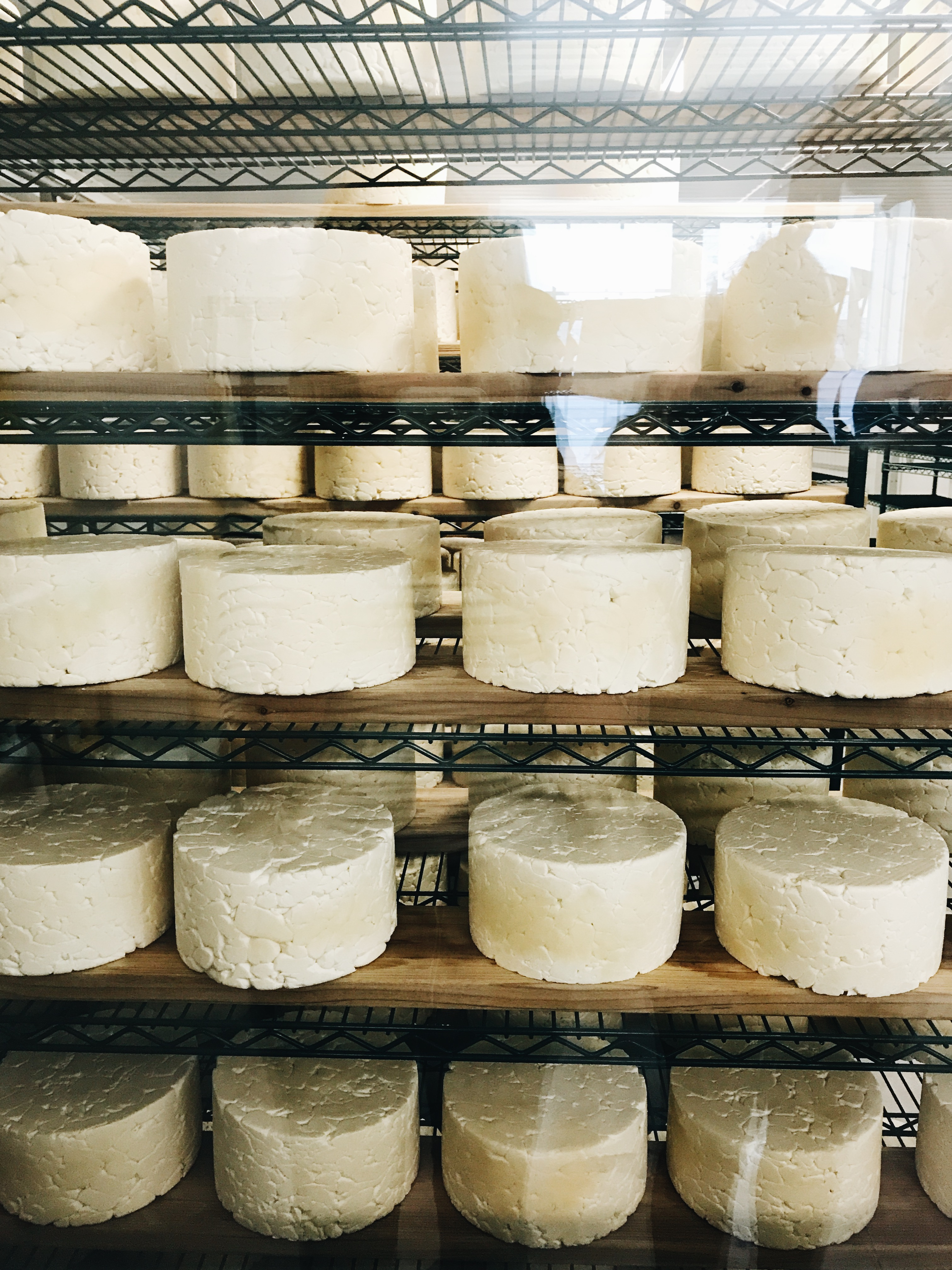 Cheese at Roelli in Wisconsin
