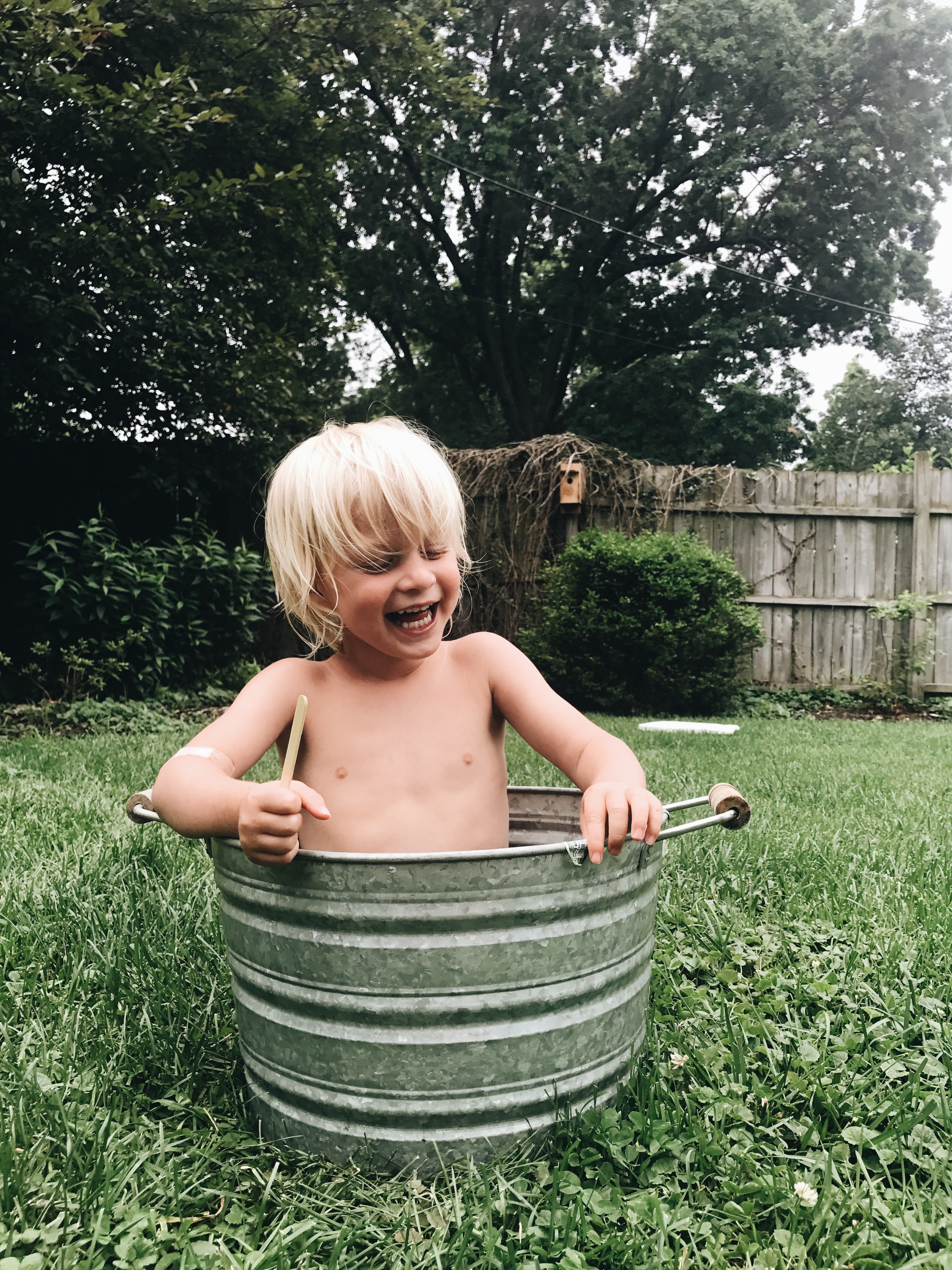 Will in a bucket