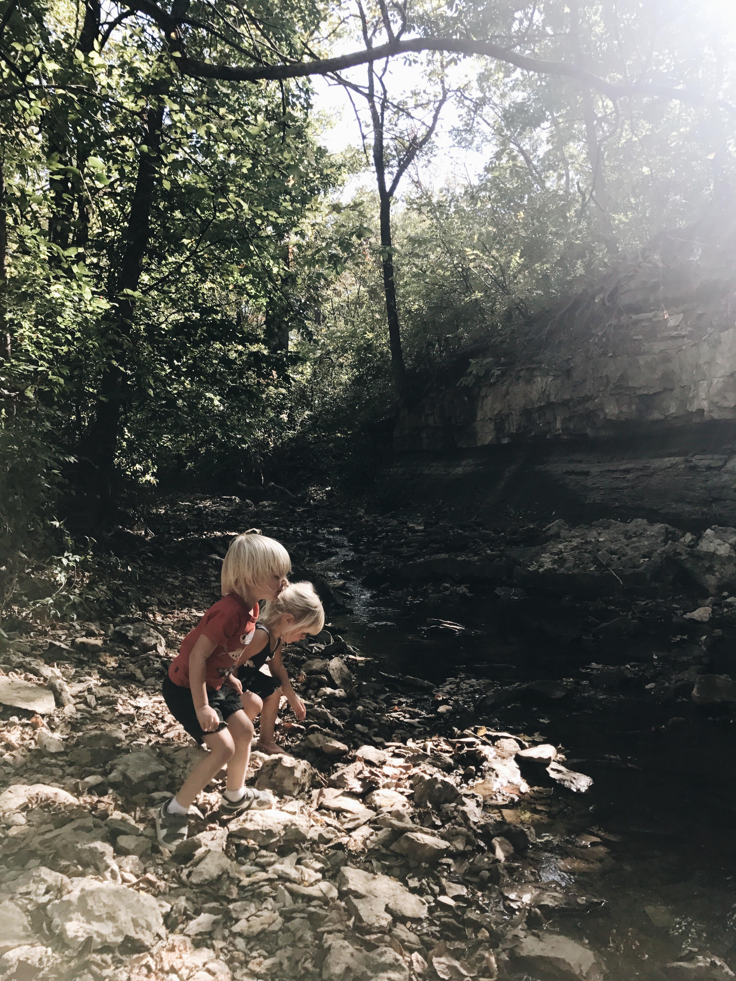 gremlins in nature