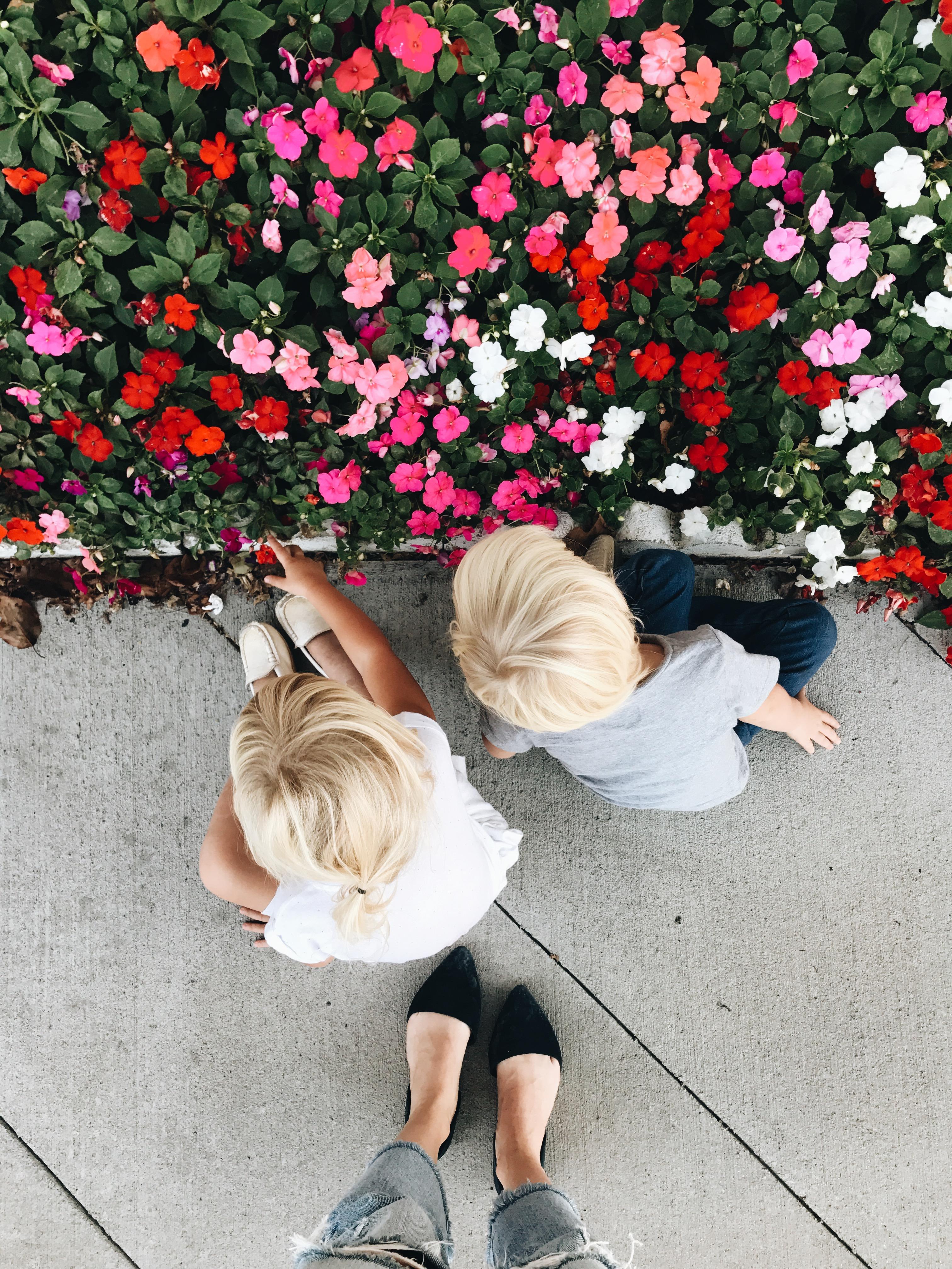 flowers, gremlins, feet