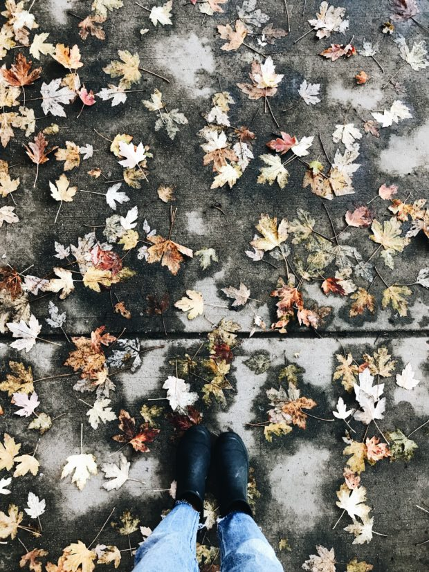 wet leaves with snow boots