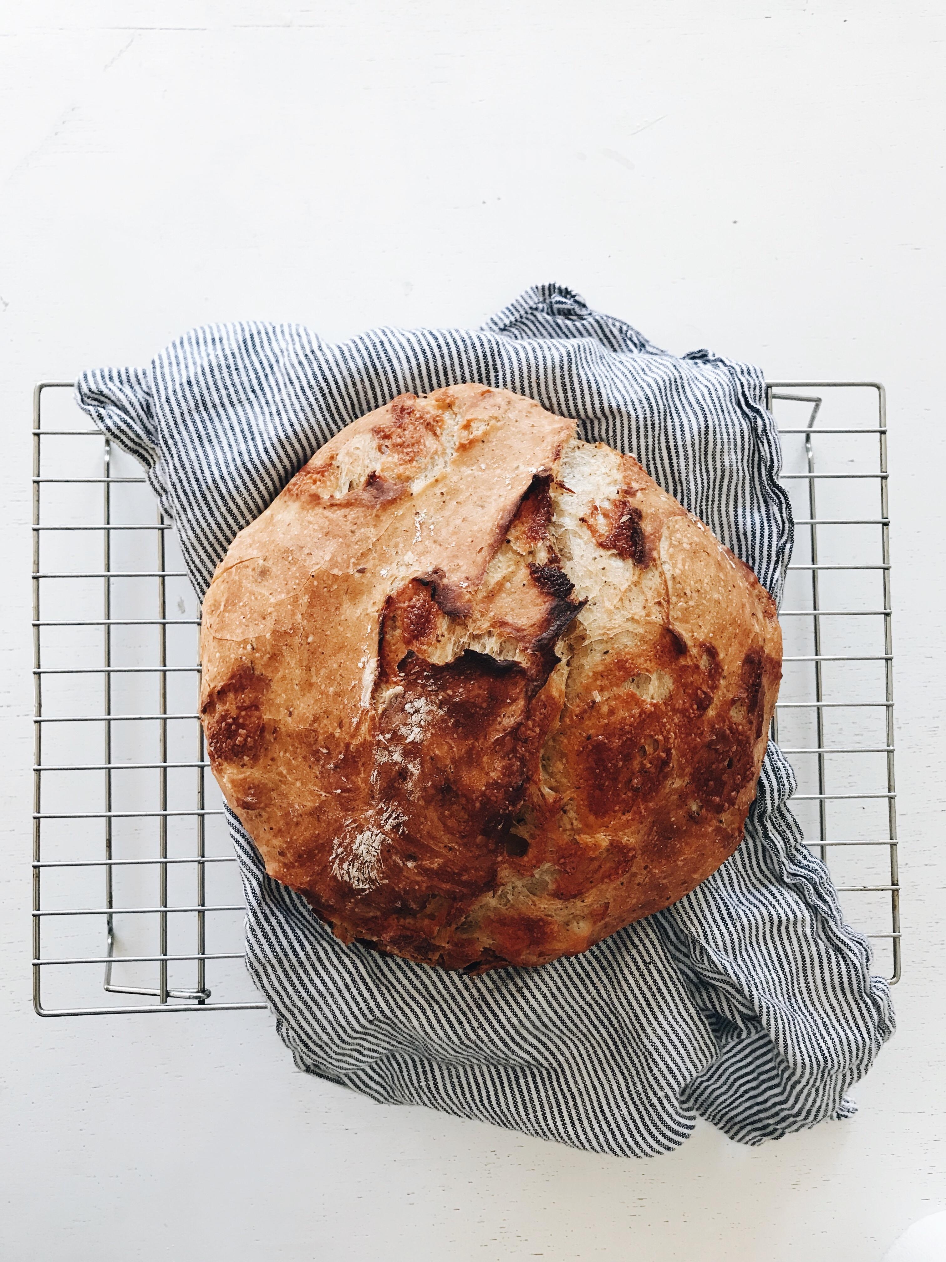 No-Knead Cheesy Rustic Bread / Bev Cooks