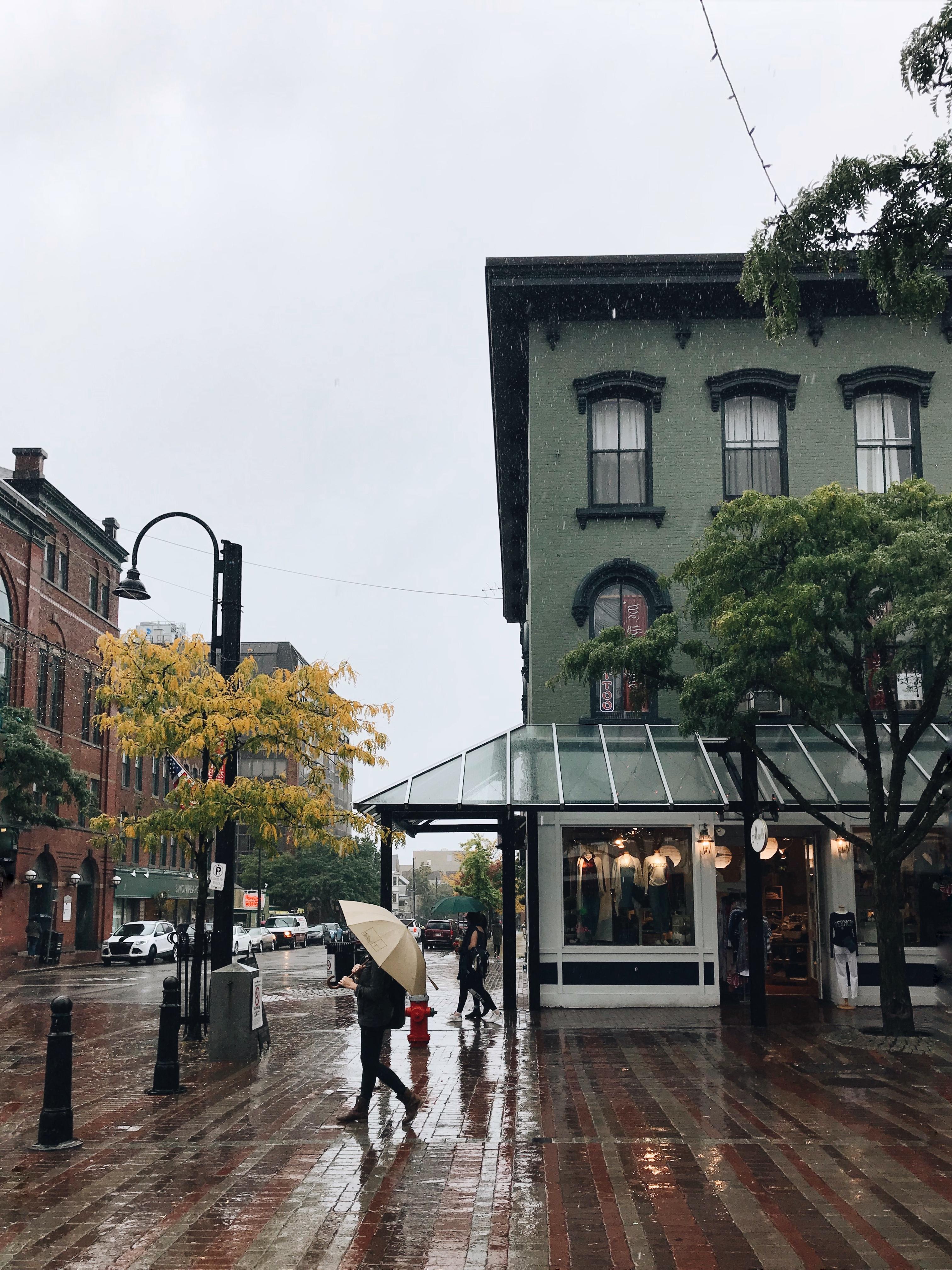 Rainy Vermont
