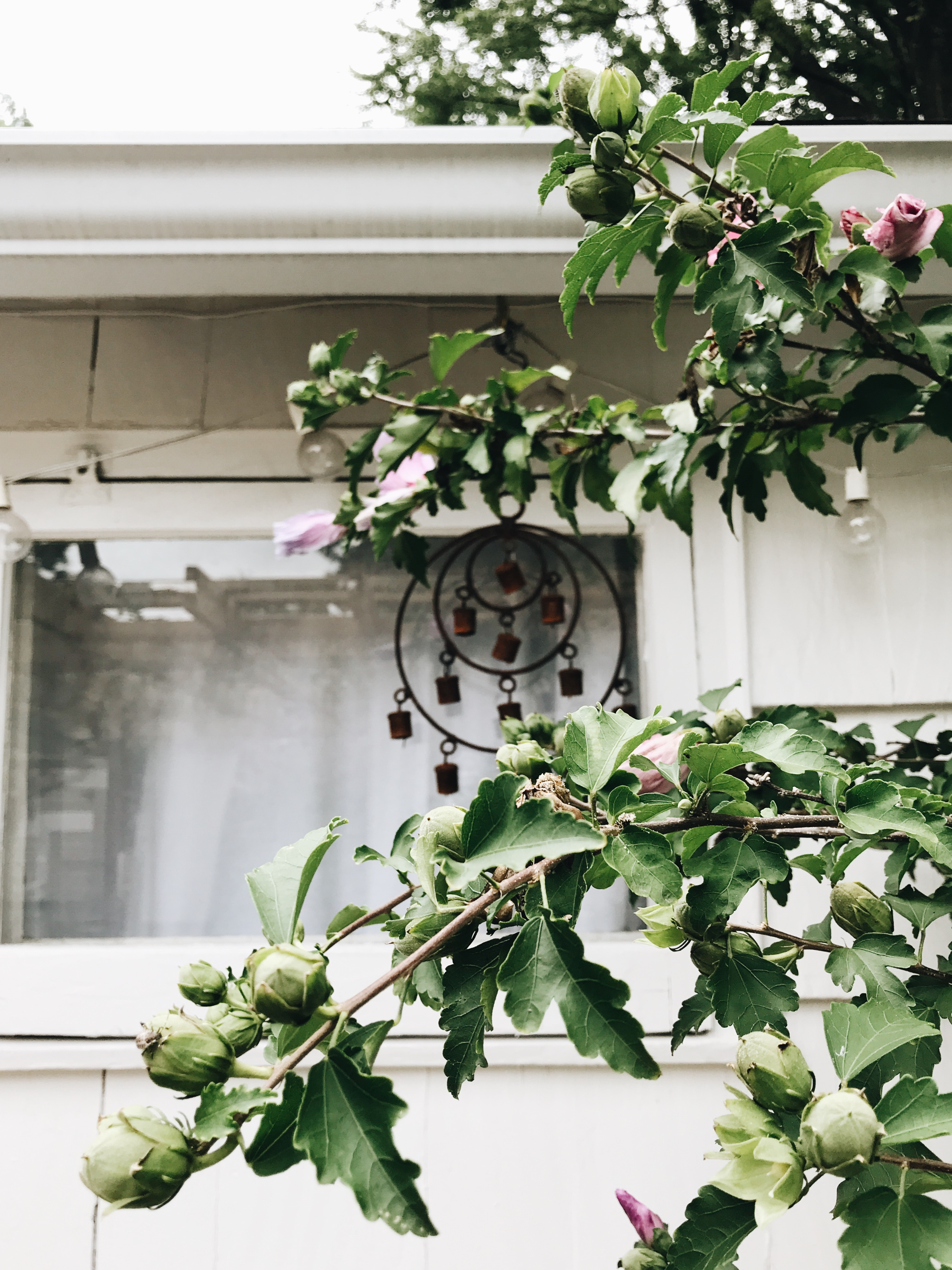flowers and widow chimes
