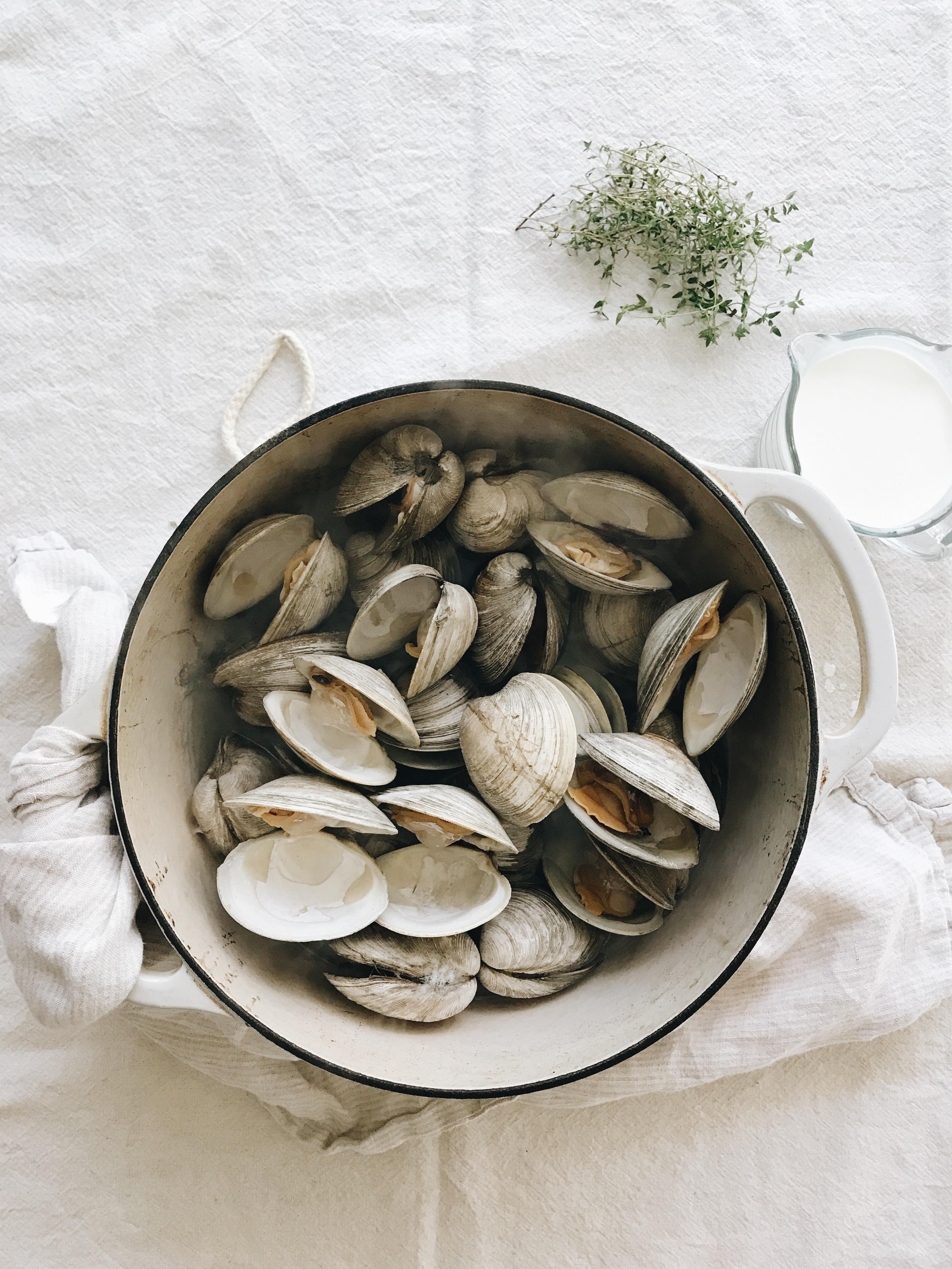 New England Clam Chowder / Bev Cooks