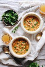 Chicken Salsa Soup / Bev Cooks