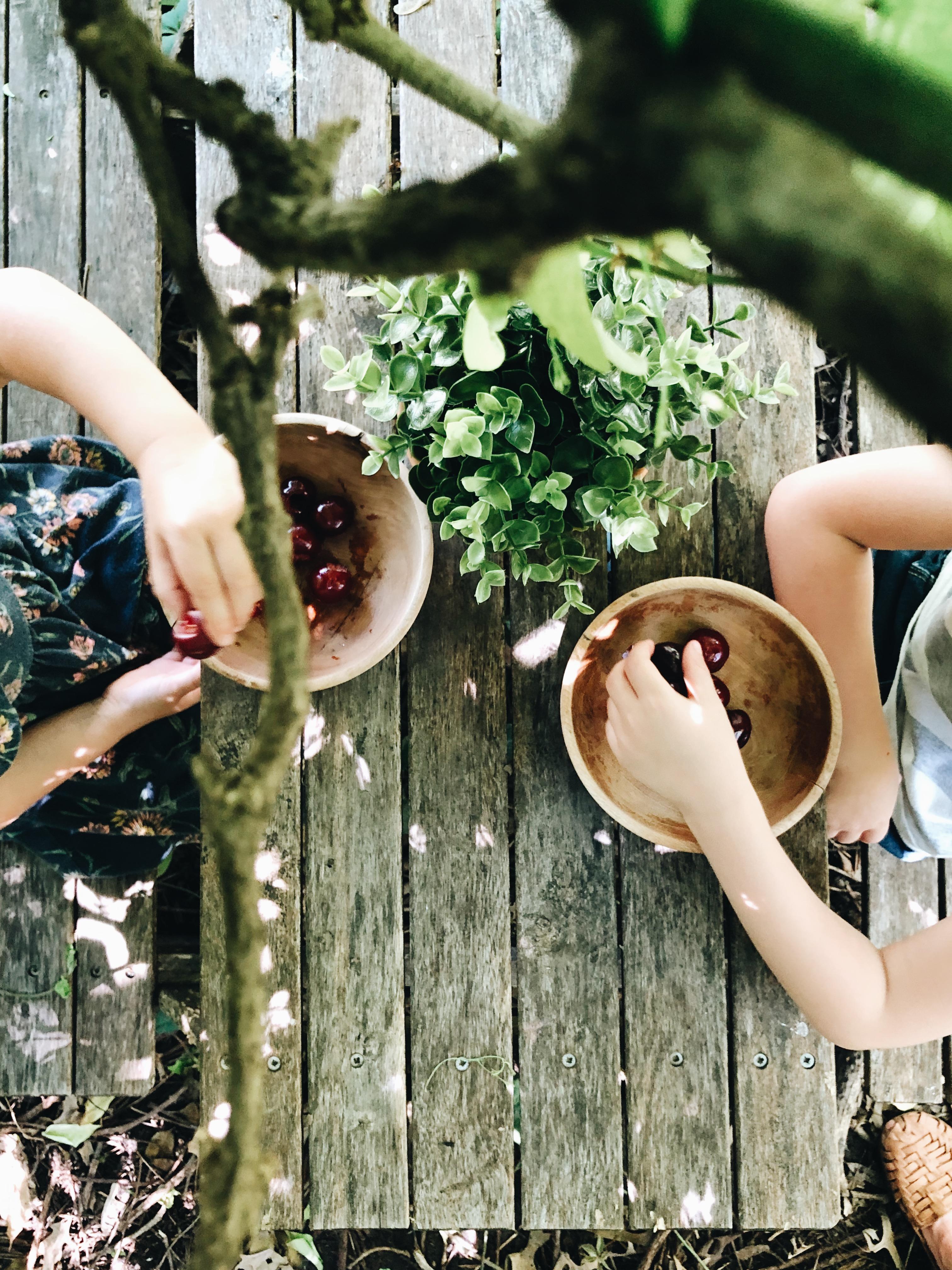 hands in cherries
