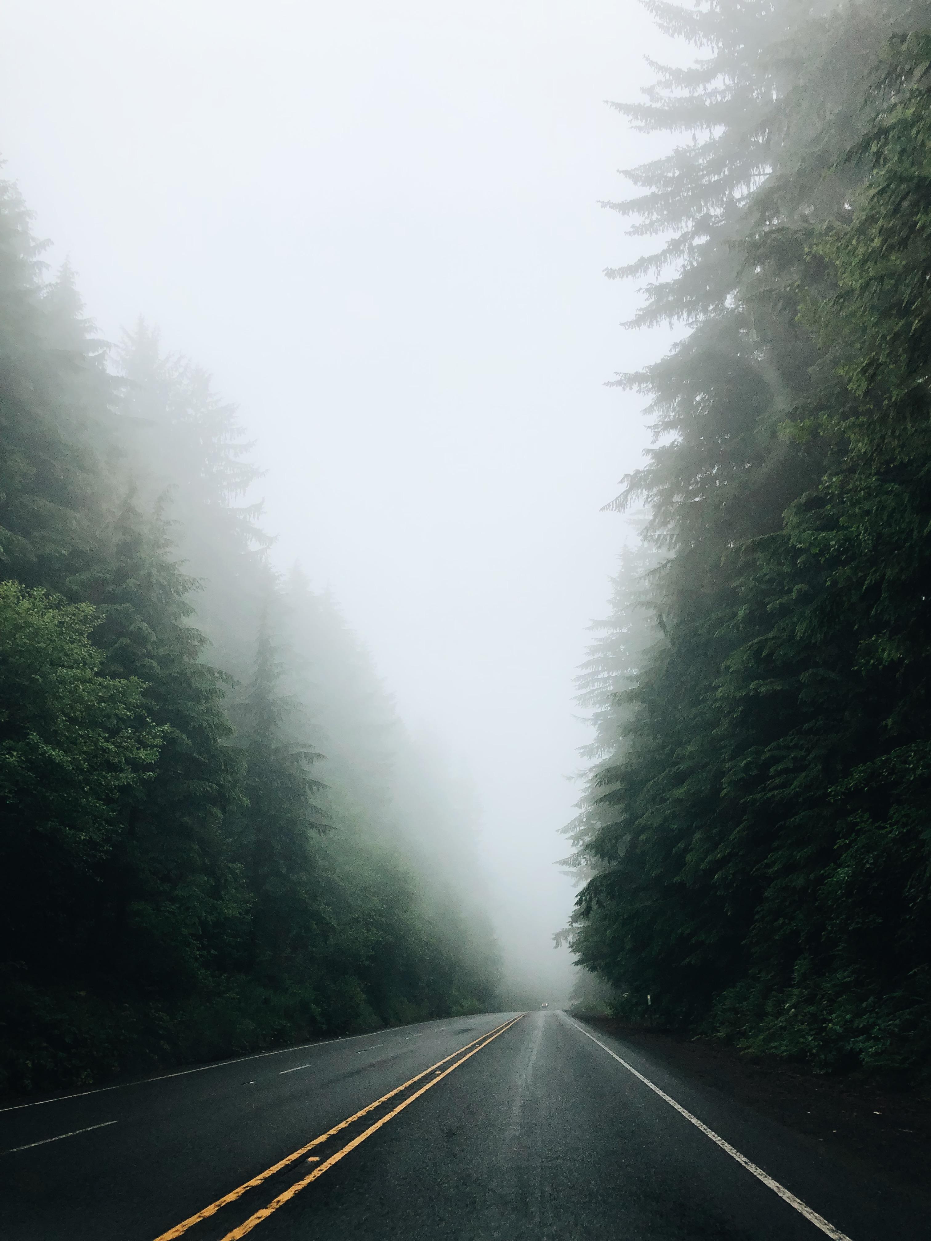 Oregon Coast / Bev Cooks