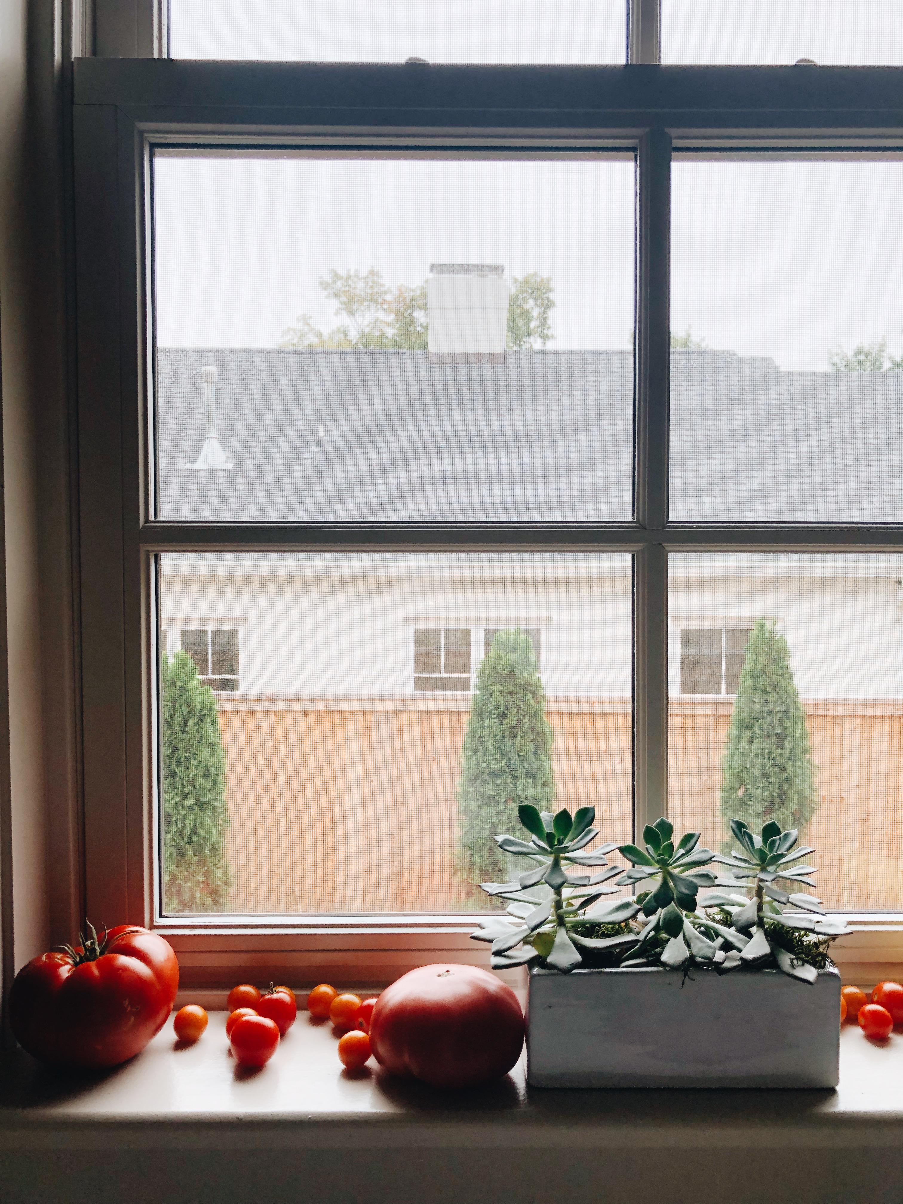summer in a window