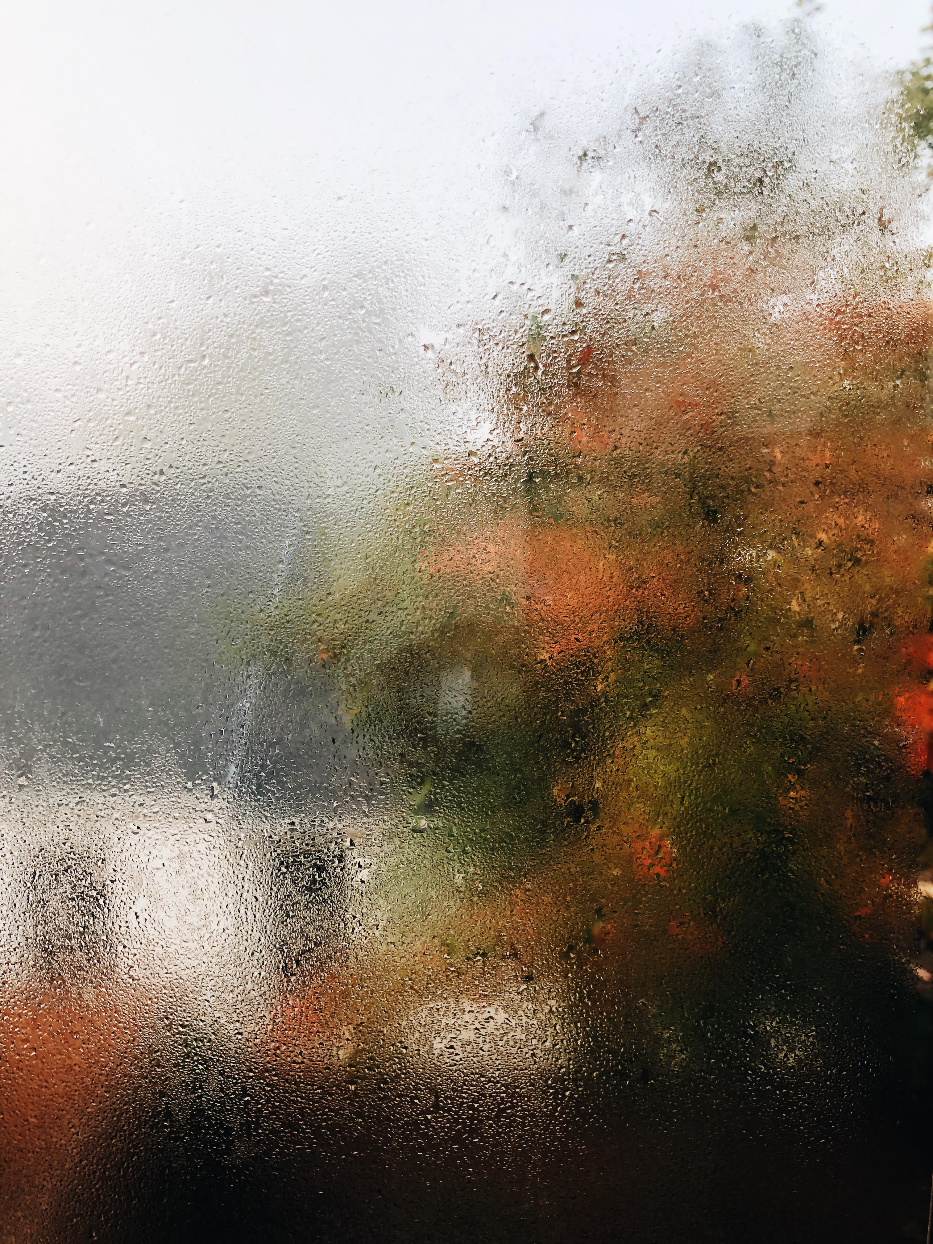 foggy window