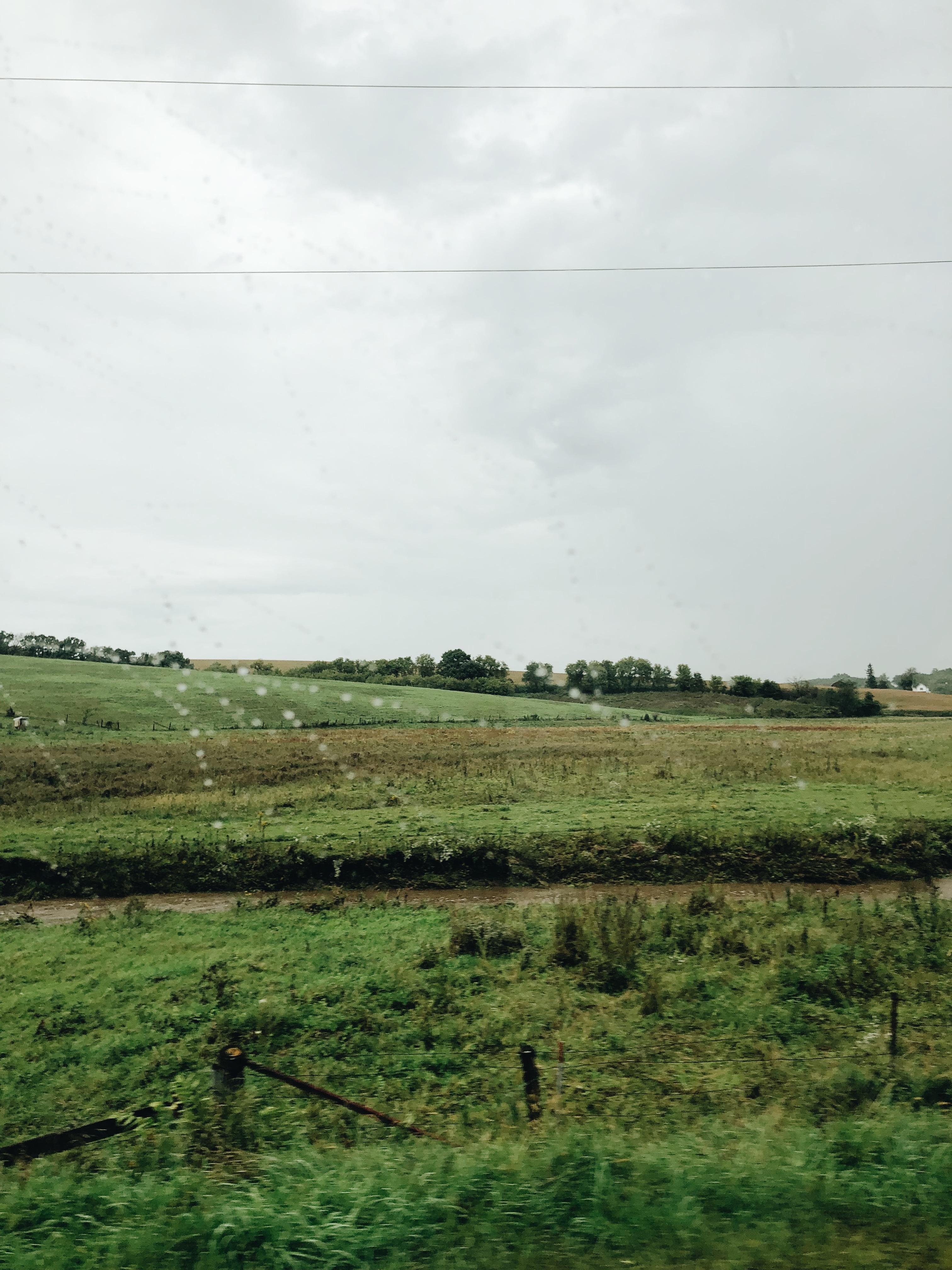 countryside in the rain