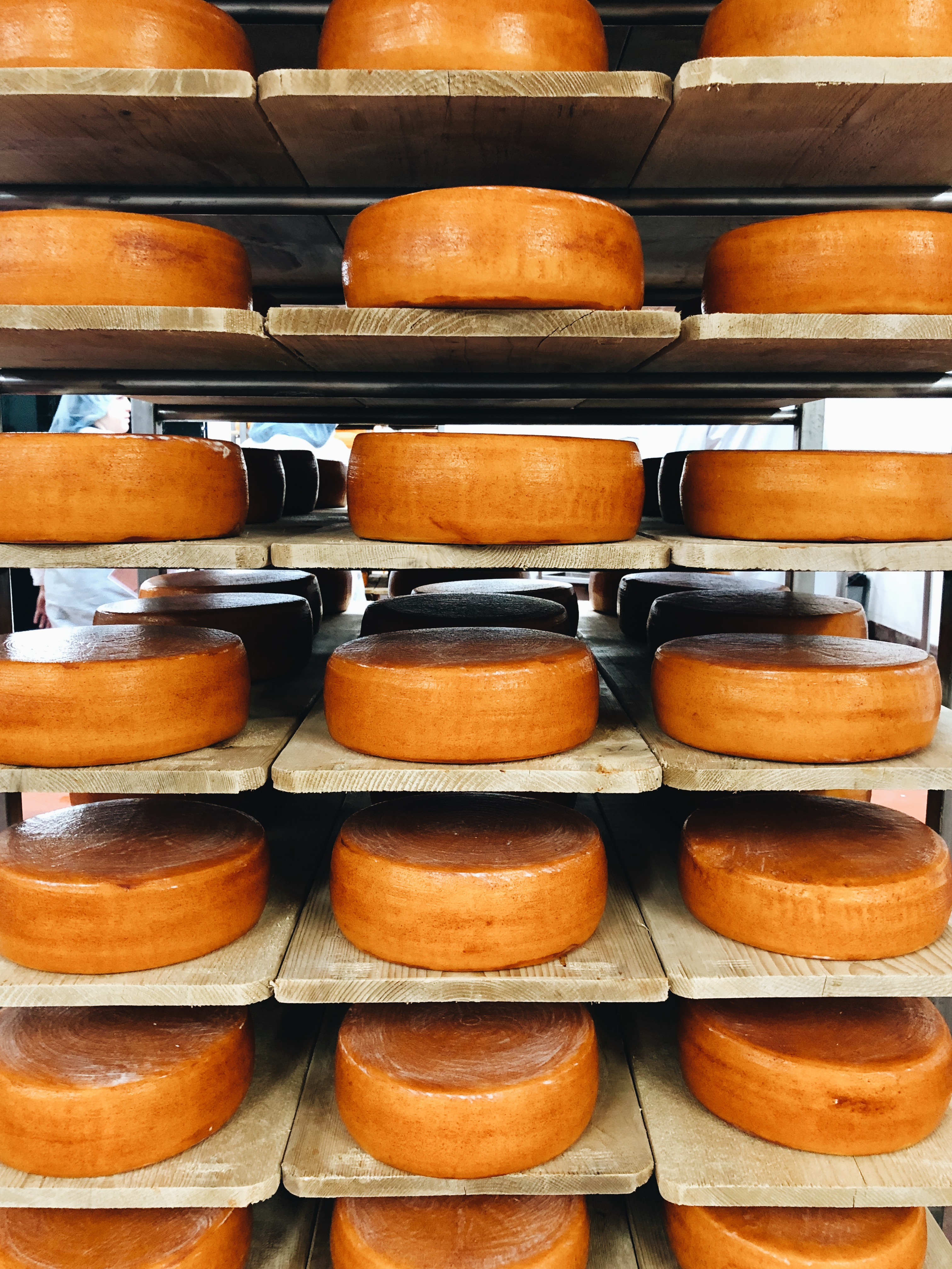 My Trip to Roth Cheese!