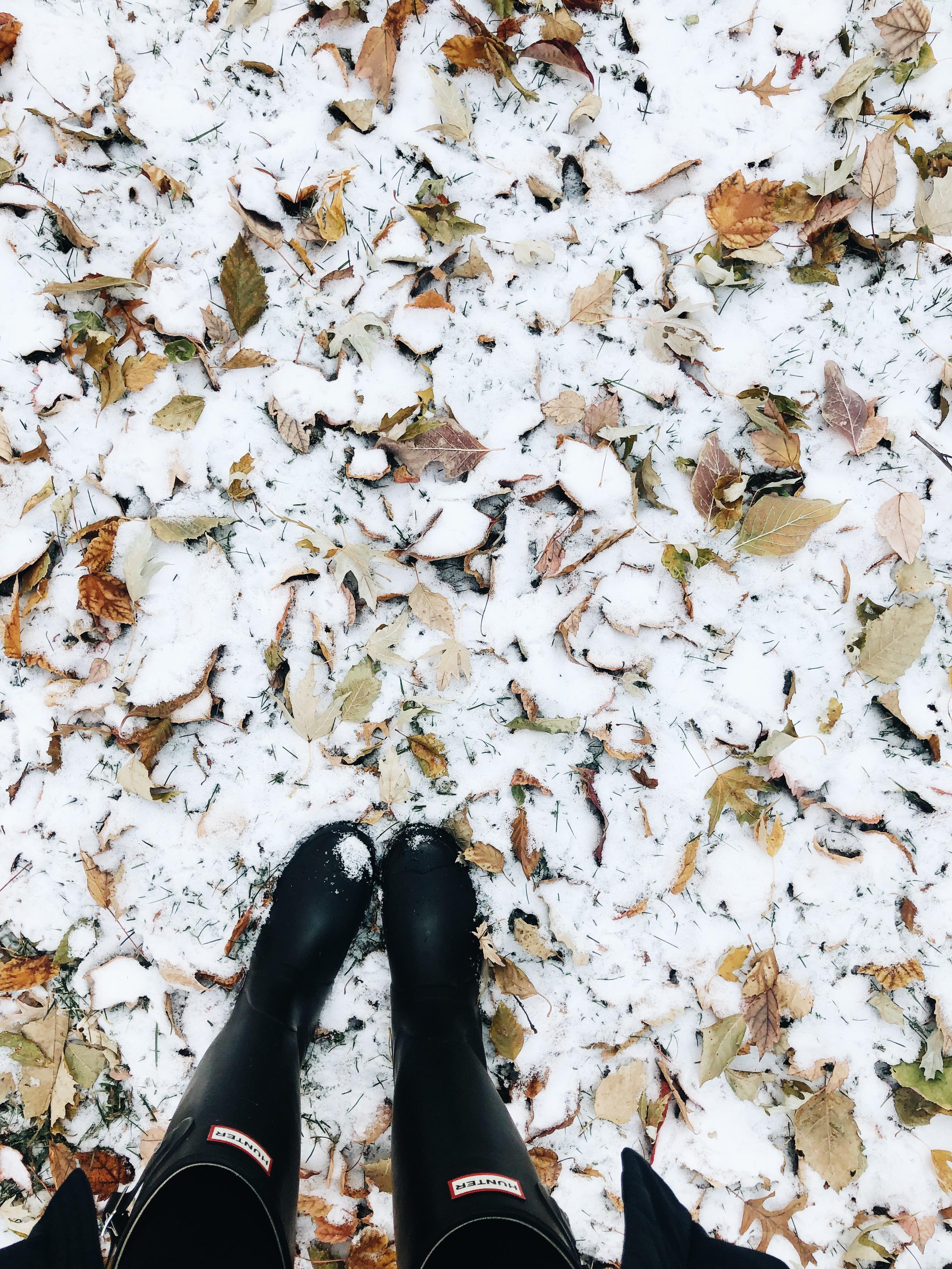feet in snow / bev cooks