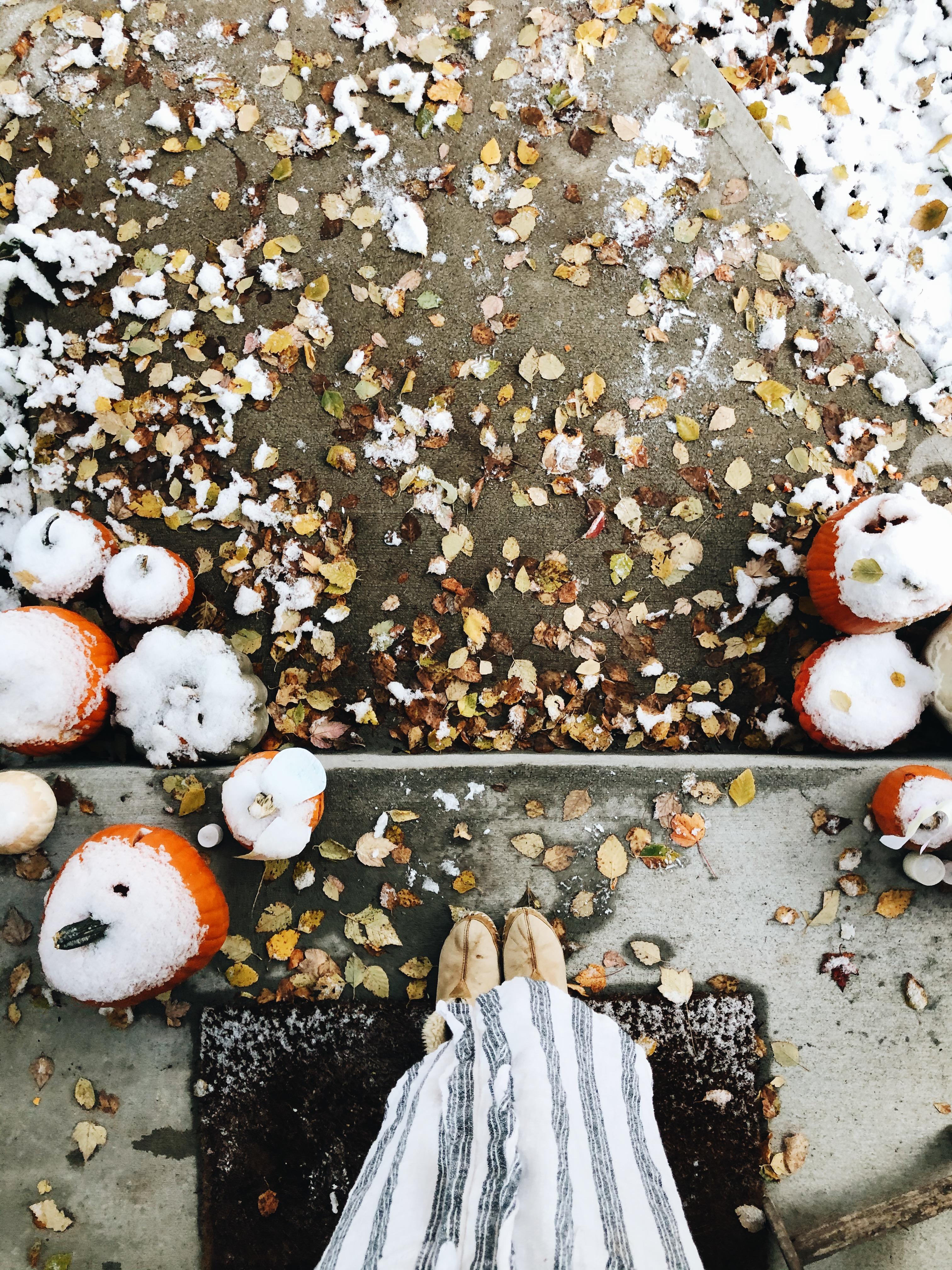 snowy pumpkins / bev cooks