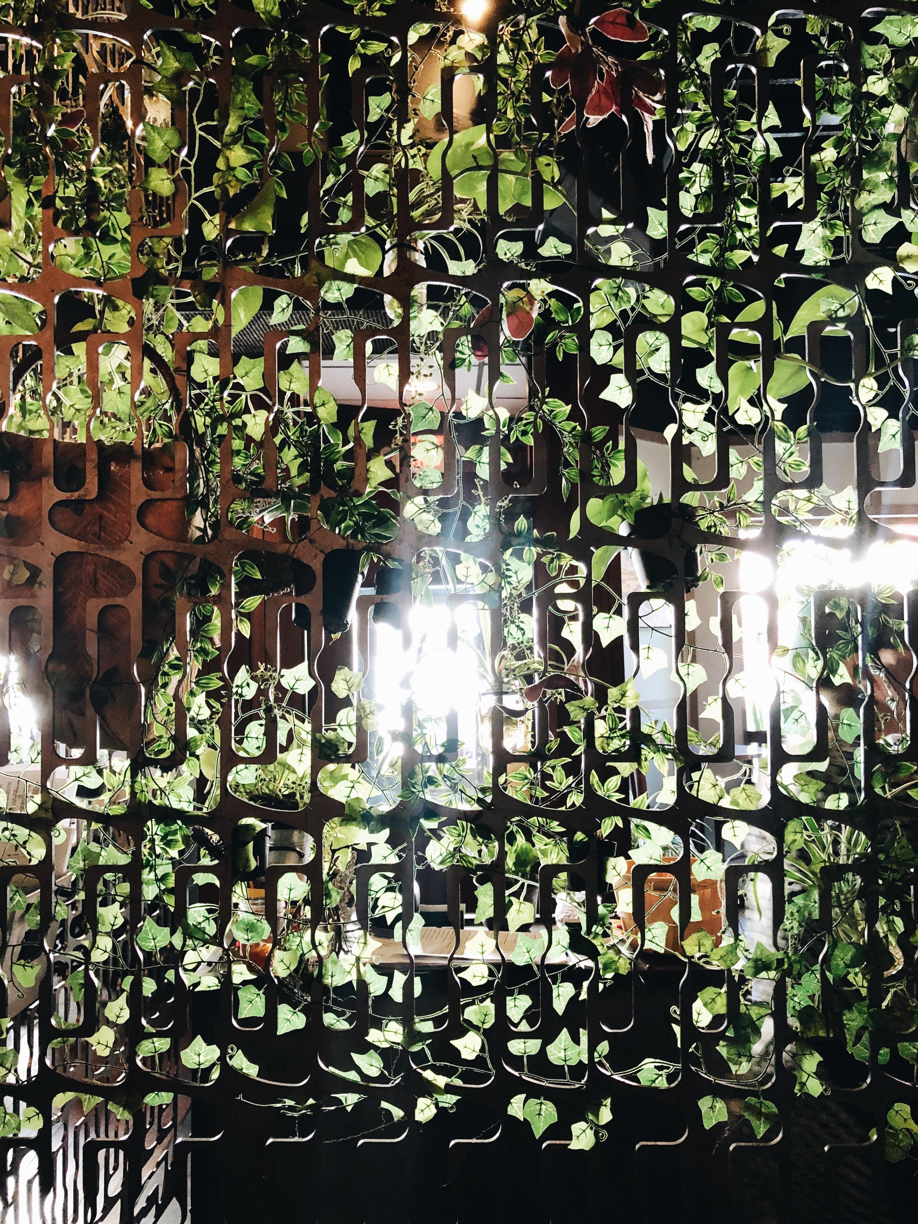 ivy in restaurant / bev cooks
