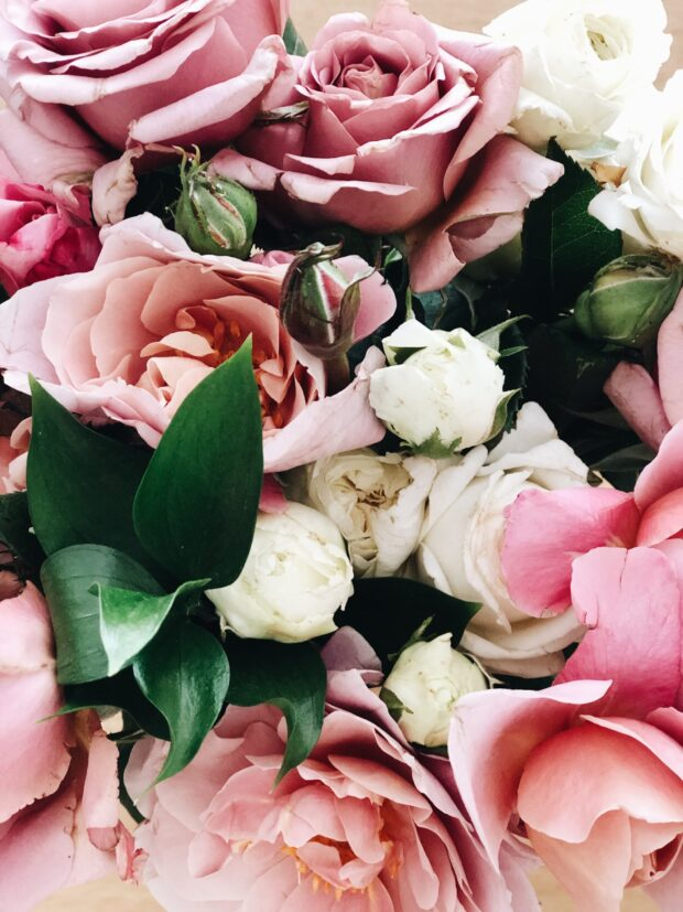 Roses / bev cooks