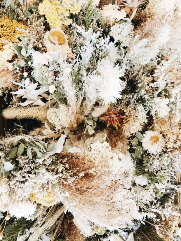 dried flowers / bev cooks