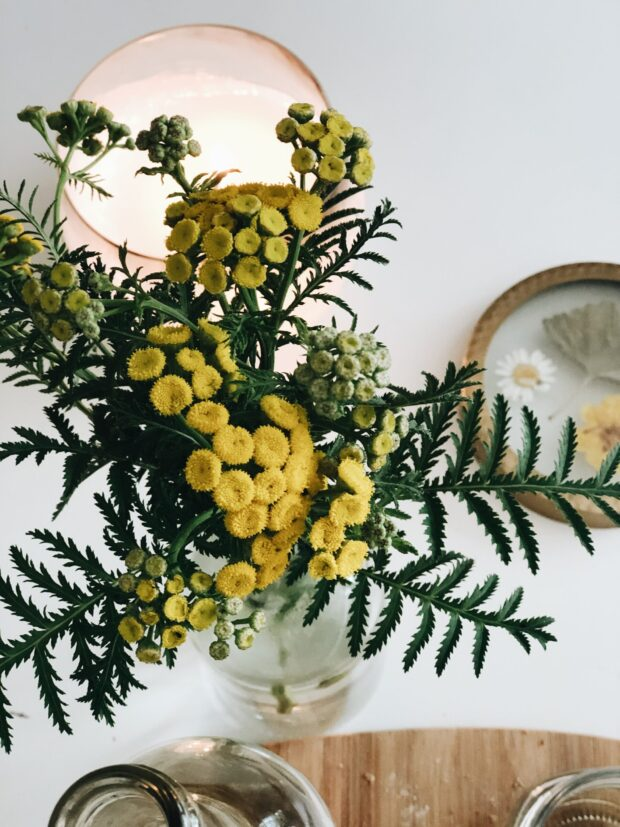 garden flowers / bev cooks