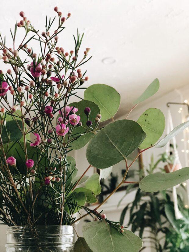 flowers / bev cooks